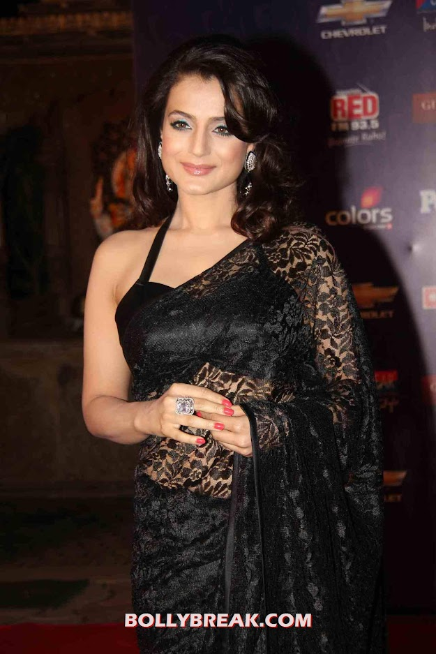Amisha Patel Hot in Black Saree - hD Photo - Amisha Patel HD Photo in Black Saree - HOT
