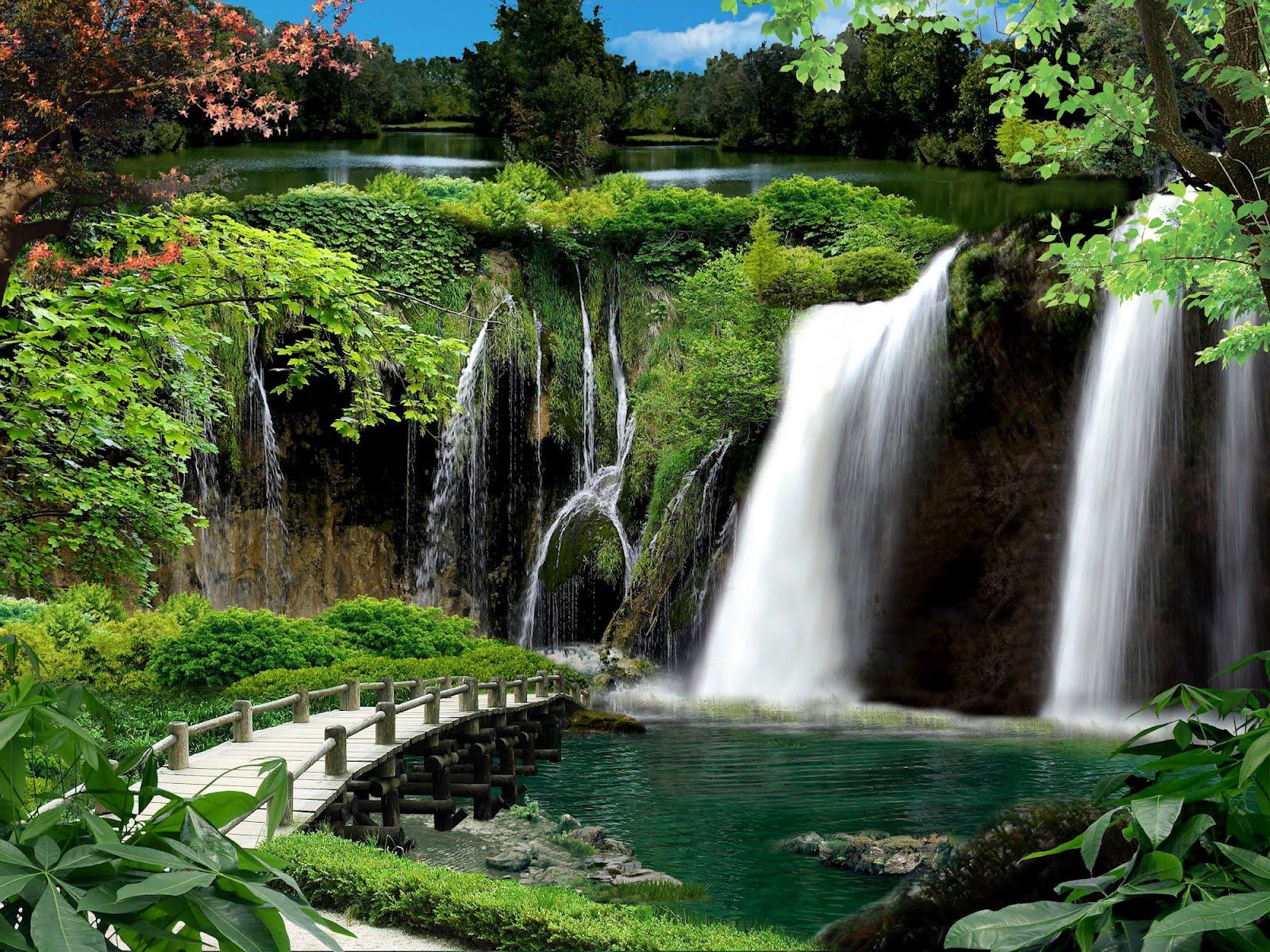 Banco de im genes arroyo que cruza el bosque con hermosas for Fotos cascadas