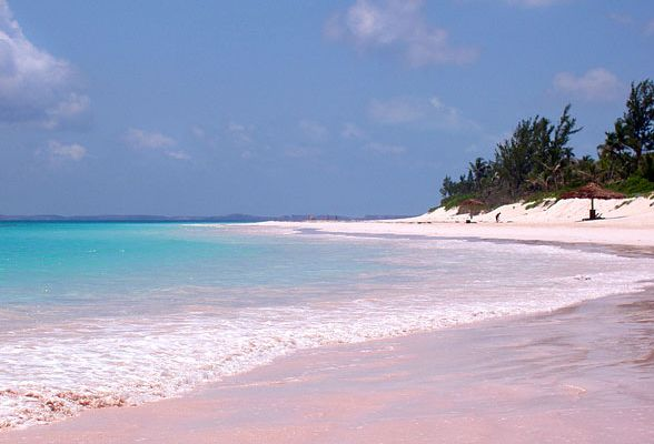 Bahamas pink sand beach harbour island travel4foods for Pink sand beaches bahamas