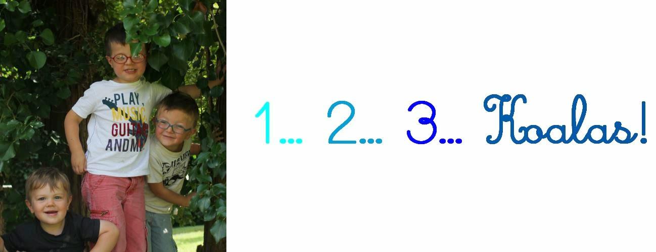 les2koalas