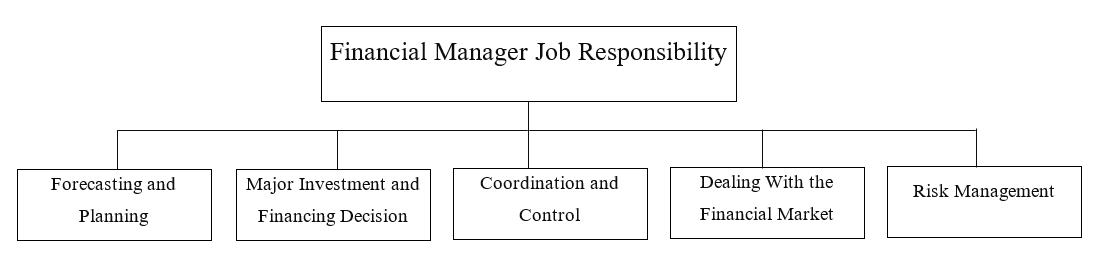 financial manager job responsibilities types