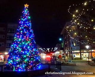 Denver+December+4+(8).JPG