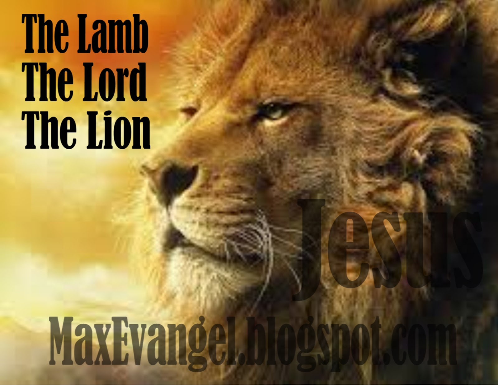 maxevangel jesus christ the lamb the lord the lion