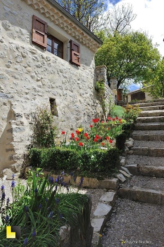 montée d'escalier fleurie valdrome photo pascal blachier