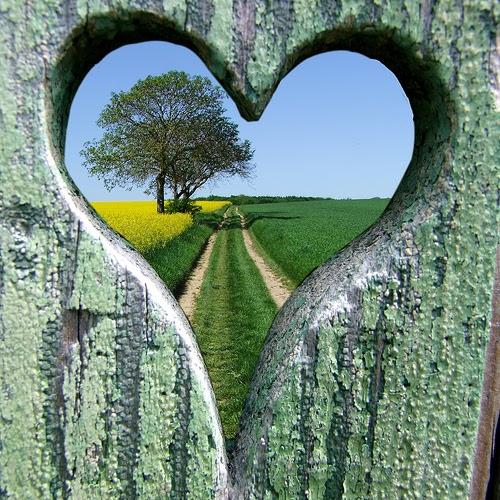 Michel blogue avec Louise Cardin/Sujet/L'Écoute du coeur/Évangélise notre regard/ Chemin+de+coeur