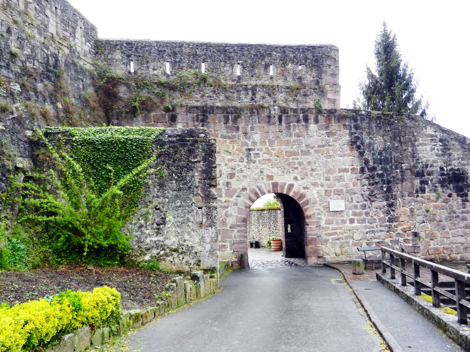 du Camino entre Saint Jean Pied de Port et Pampelune