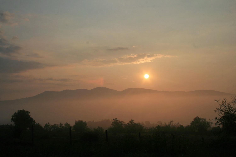 The sun, drifting into the sky