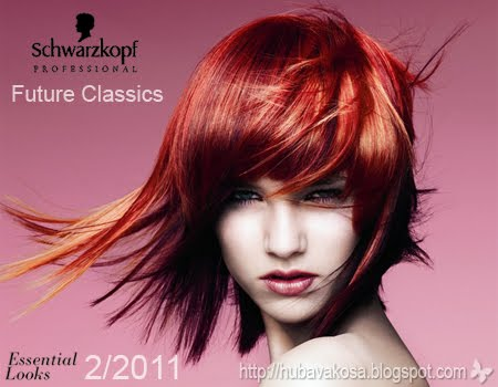 Schwarzkopf есен/зима 2011/12 колекция  Igora Colour тренд Future Classics