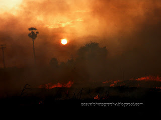 Evening-Sun-Midst-Fumes-Trichy