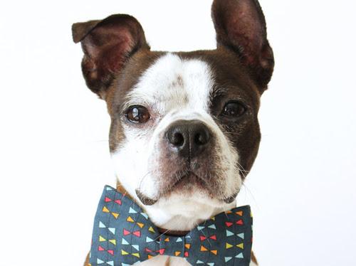 Etsy Finds: Doggy Days