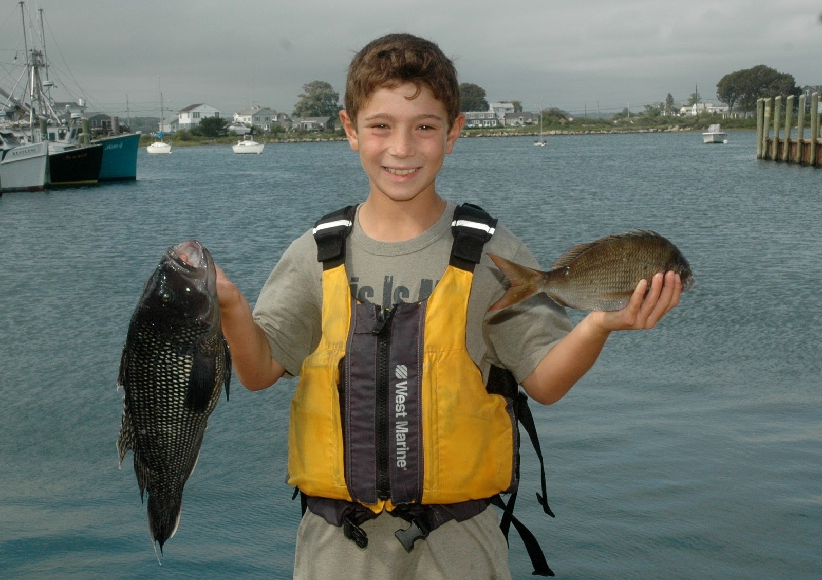 No fluke fishing new commercial fishing licenses for Rhode island saltwater fishing license