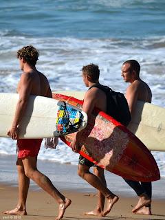 surfing trio