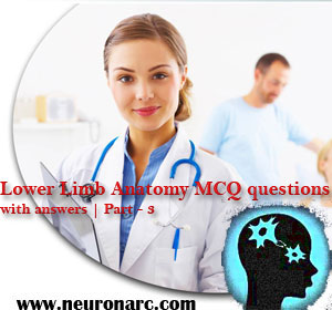 Lower Limb Anatomy MCQ questions with answers | Part – 3