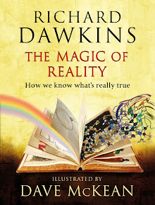 RECOMMENDED: The Magic of Reality