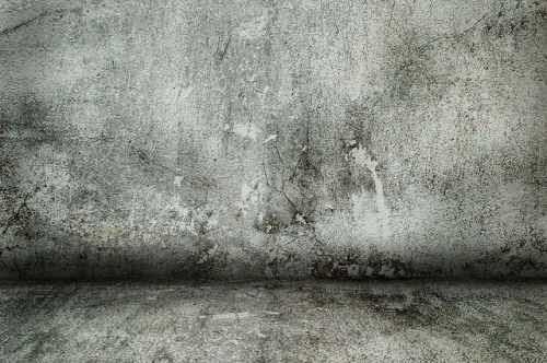 Receita de anti-mofo caseiro para guarda-roupa e paredes