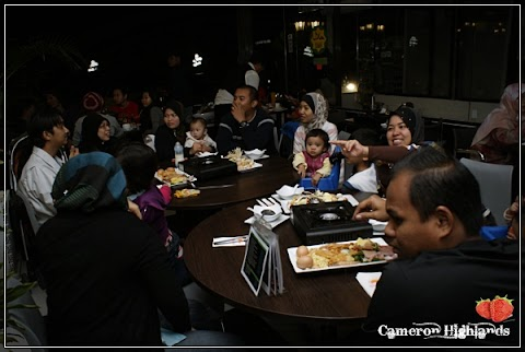 Cameron Highlands Trip | Steamboat Time..