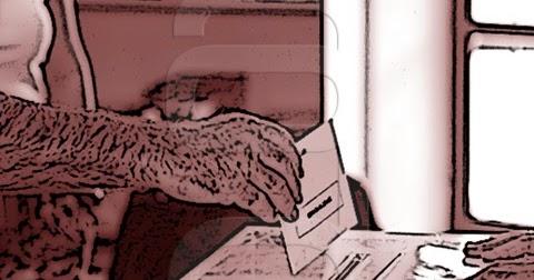 Cad veres y muertos vivientes baena digital for Muebles baena