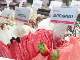 abf, franquia, franchising, gelateria, sorveteria, sebrae, estuppendo, fredo