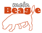 Welt der Beagle