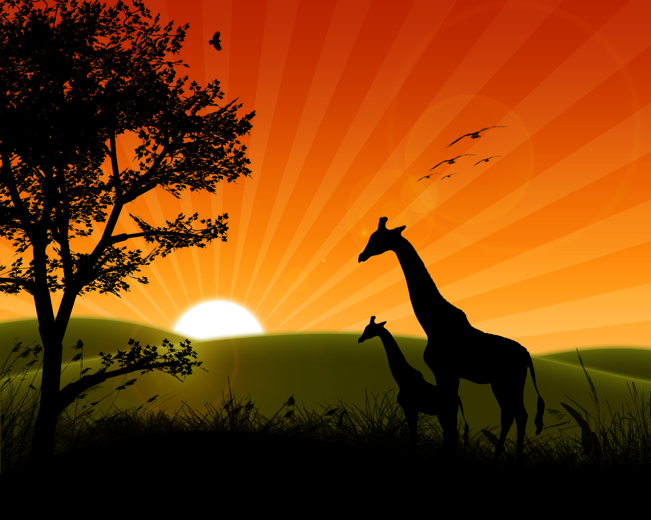Beautiful Animated Sunrise Wallpaper Download