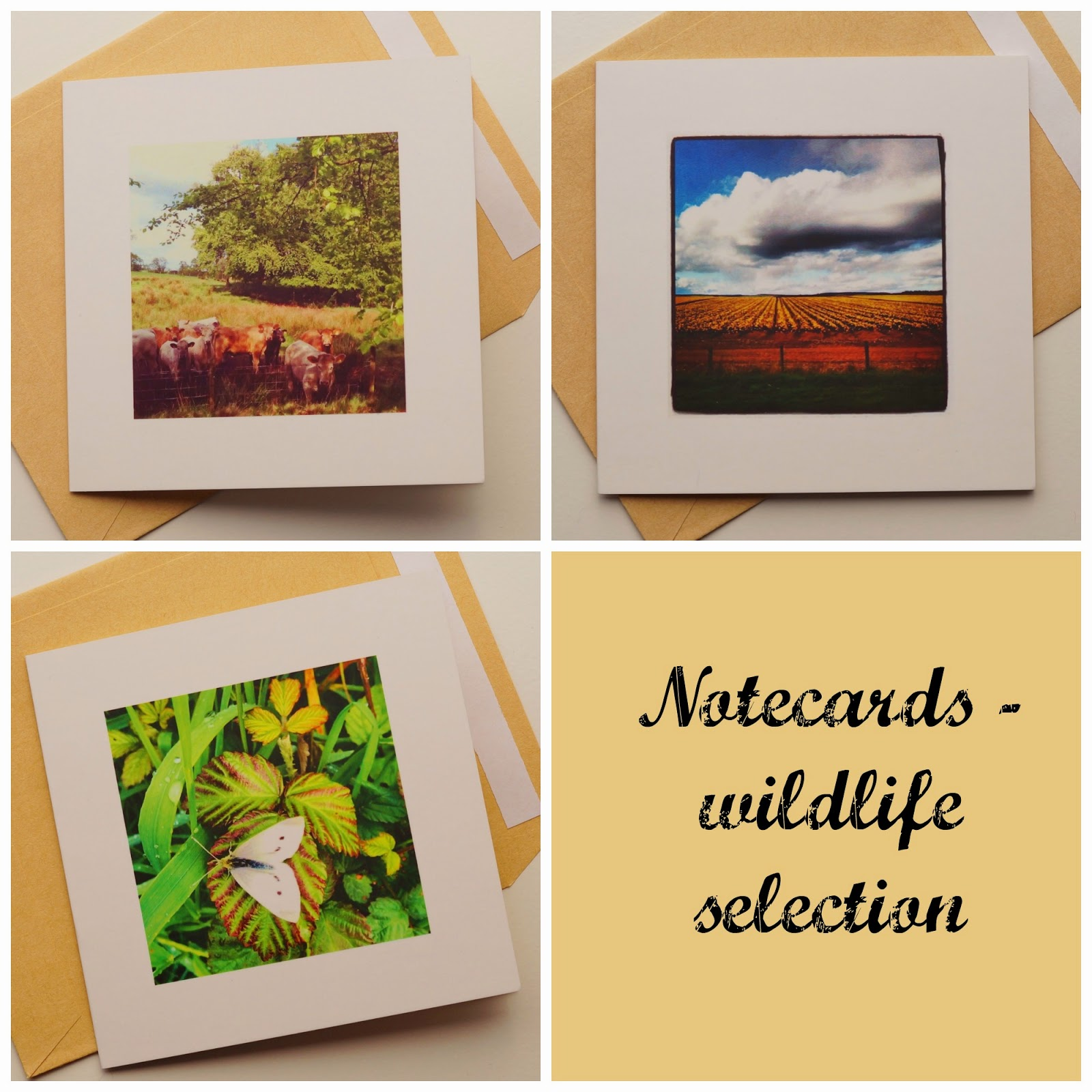 Wildlife card collection property of Carrie Gault - ohcherryblossomtattoo.com