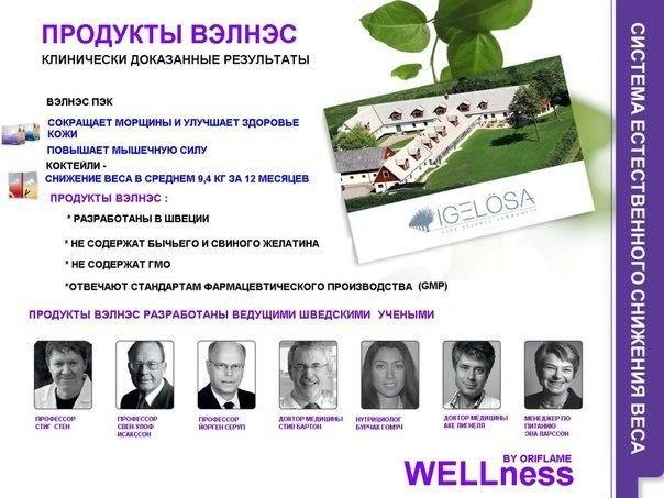 Что такое Wellness? Велнесс-индустрия. Принципы велнеса