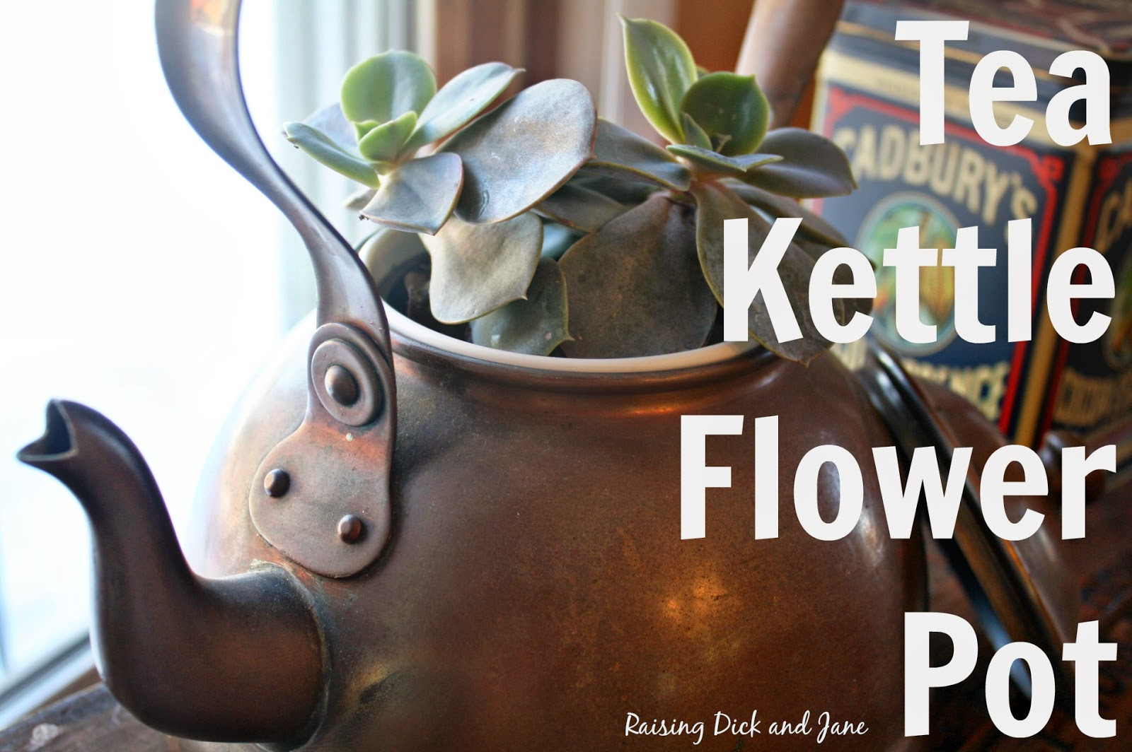 tea kettle flower pot