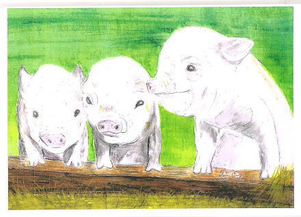 Three Piggies pic