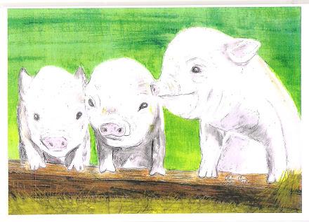 Three Piggies pic