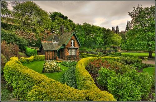 Garden Tips from English garden