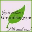 Bli en grønn blogger