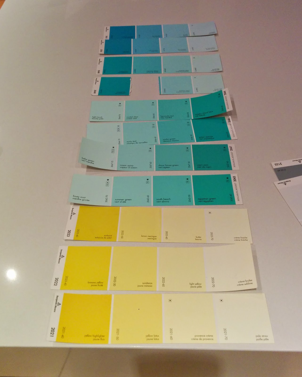Benjamin Moore Paint Samples