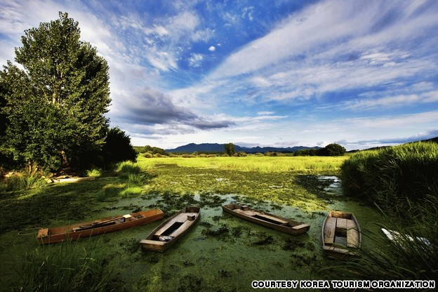 Upo Marsh (우포늪)
