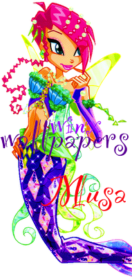 Winx Wallpapers_Musa