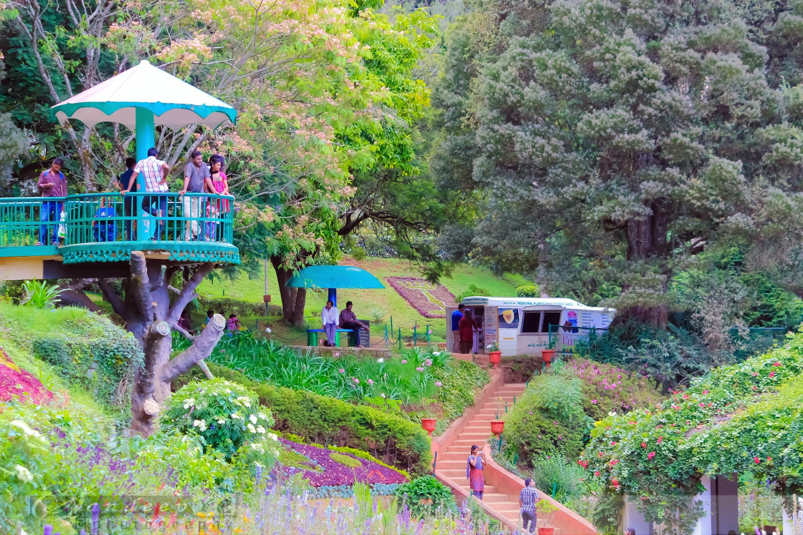 a visit to ooty Ooty tourist places, places in ooty, ooty attractions, places to see, ooty sight seeings, ooty shooting spots, awesome gallery.