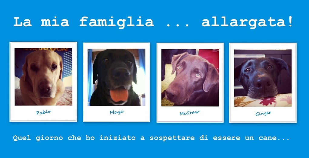 La mia famiglia...allargata!!!