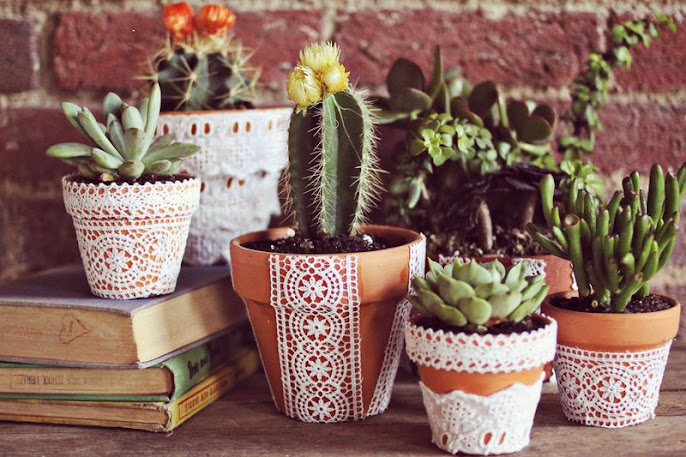 #8 Indoor Plants Decoration Ideas