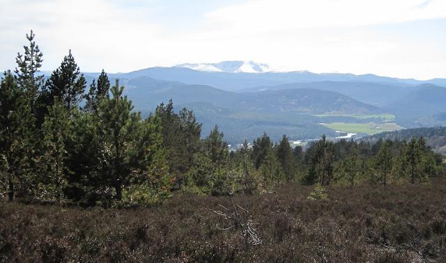 Lochnagar across Deeside
