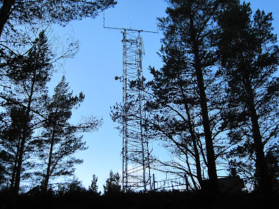 Deeside walks: climb Pannanich, at the top.
