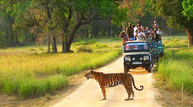 luxury holiday packages India