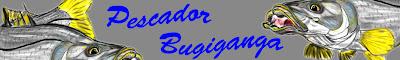http://www.pescadorbugiganga.com.br/