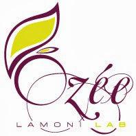 Collaborazione Lamoni Lab