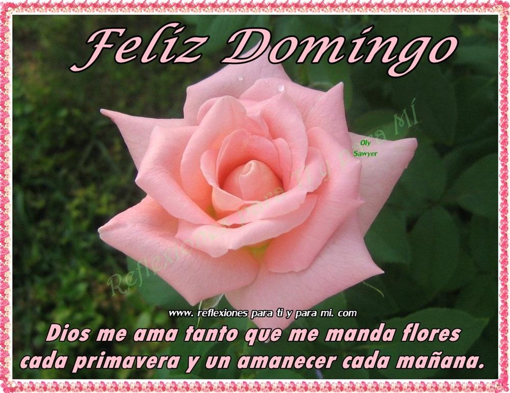 Conhecido Buenos Deseos para TI y para MÍ: * Feliz Domingo Dios me ama  XP51