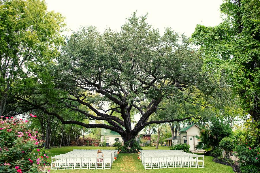 Planting Under Oak Trees : Landscape design salary landscaping under oak trees