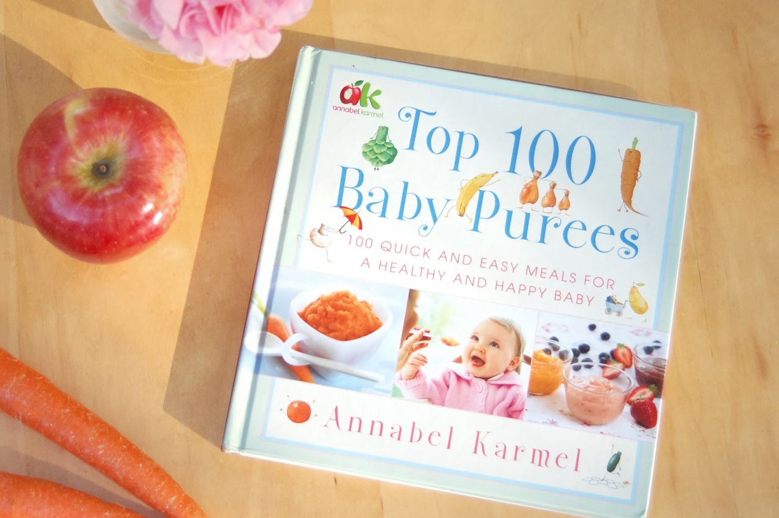 Sewing belly buttons boutique 1st baby food the best book for it is so easy to make your own baby food all you need to do is peel boil and jar the recipes in this book forumfinder Choice Image