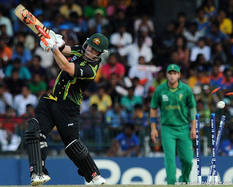 Australian Cricketer David Warner - 71.5KB