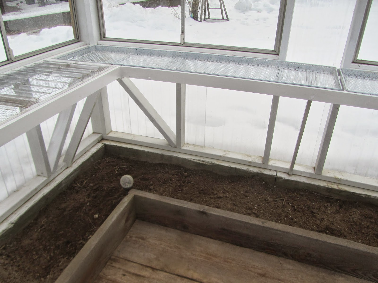 raised beds inside the unheated greenhouse