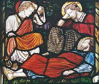 Image from http://blog.rbseminary.org/2011/01/christs-dealings-with-his-sleeping-disciples-part-1-the-believers-remaining-sin-exposed/