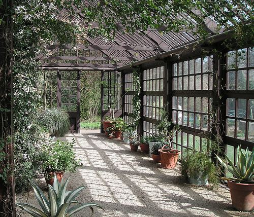 Greenhouse Room Library London