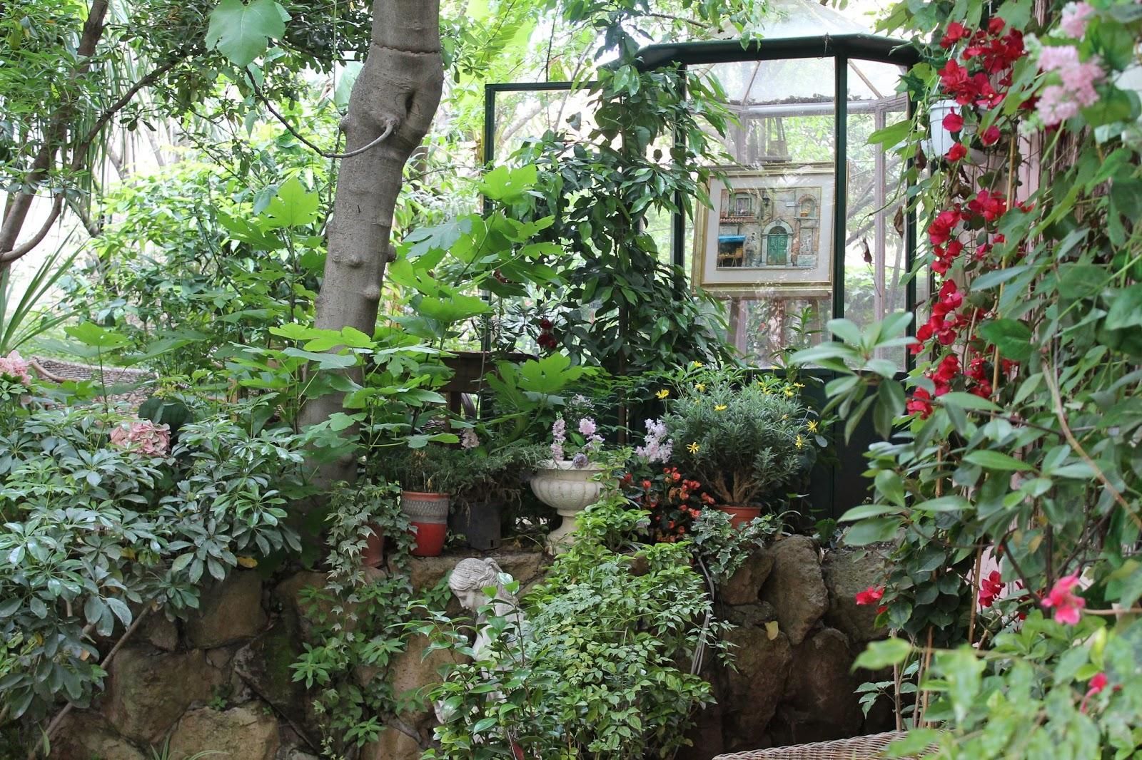 Giallodinylon il giardino segreto - Il giardino segreto roma ...
